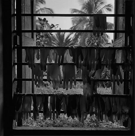 Sundarba Gloves, 2006 - Dayanita Singh