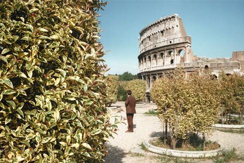Roma 1979