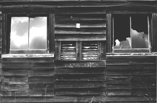 Minor White - The three thirds (1957)