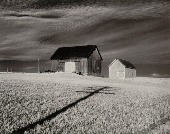 Minor White - Shadow