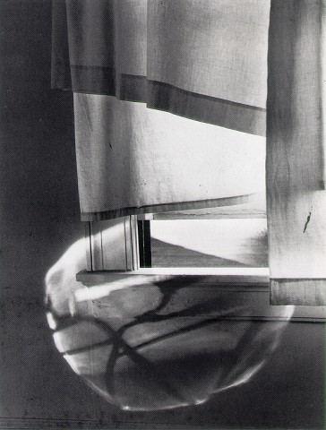Minor White - Windowsill