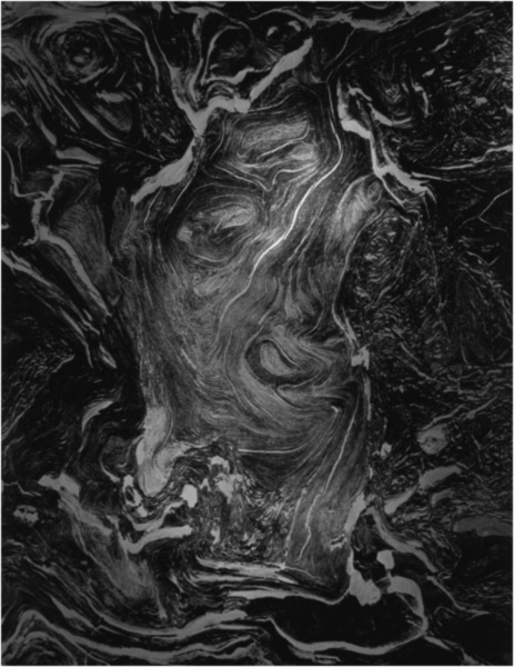 Wynn Bullock: Wood Bacchus,1972