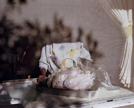 Larry Sultan - Pavo