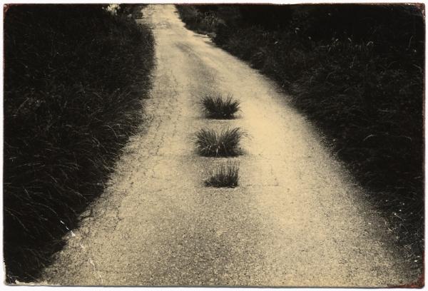 Masao Yamamoto: A Box of Ku, #94