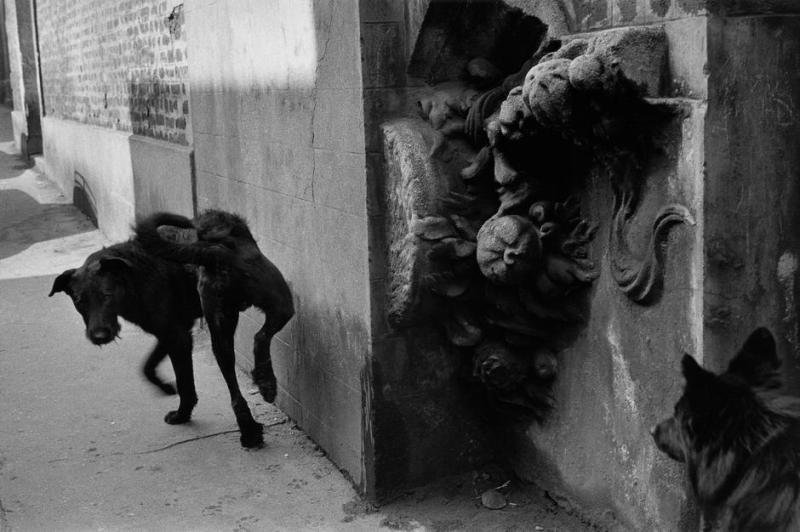 """""""La Ruche"""", artists' village. FRANCE. Paris. Montmartre. 1959."""